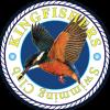 Kingfishers Swimming Club